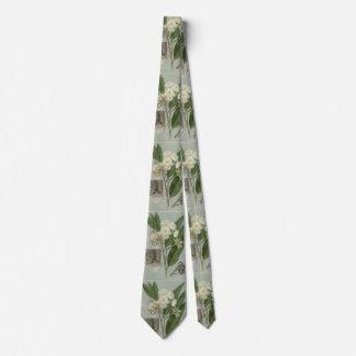 Eucalyptus tie