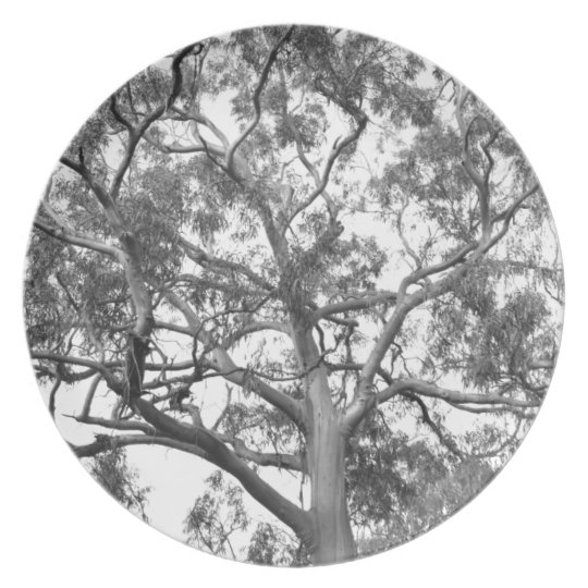Eucalyptus Tree Dinner Plate