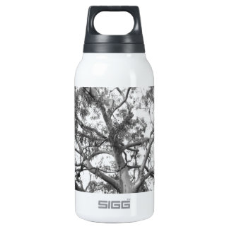 Eucalyptus Tree Insulated Water Bottle
