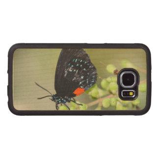 Eumaeus Atala Funda De Madera Para Samsung Galaxy S6