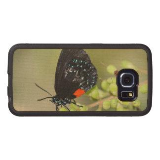Eumaeus Atala Funda De Madera Para Samsung Galaxy S6 Edge