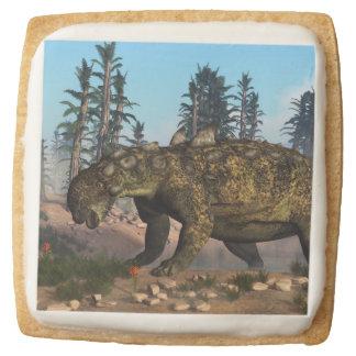 Euoplocephalus dinosaur - 3D render Square Shortbread Cookie