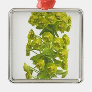 Euphorbia Metal Ornament