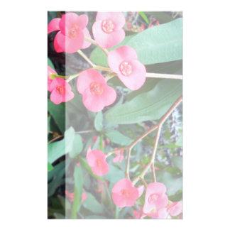 Euphorbia milii flyer