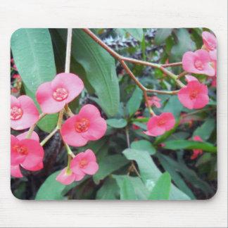 Euphorbia milii mouse pad