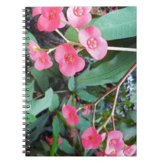 Euphorbia milii notebook
