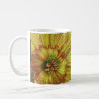 Euphoria Coffee Mugs