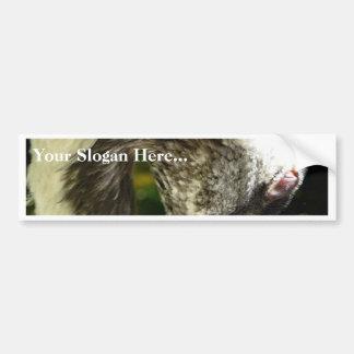 Eurasian Crane Close Up Car Bumper Sticker