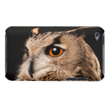 Eurasian Eagle Owl Barely There iPod Cover