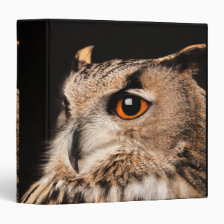 Eurasian Eagle Owl Binder