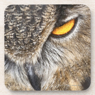 Eurasian Eagle Owl (Bubo bubo) Beverage Coasters