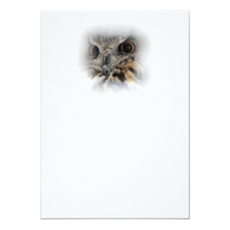 Eurasian Eagle-owl Card
