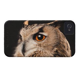 Eurasian Eagle Owl iPhone 4 Case-Mate Case