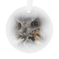 Eurasian Eagle-owl Ornament