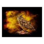 Eurasian Eagle-Owl portrait Print