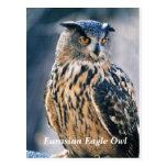 Eurasian Eagle Owl Post Cards
