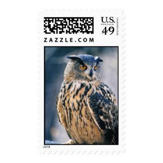 Eurasian Eagle Owl Postage Stamp