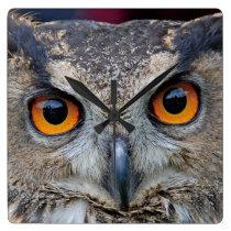 Eurasian Eagle Owl Square Wall Clock