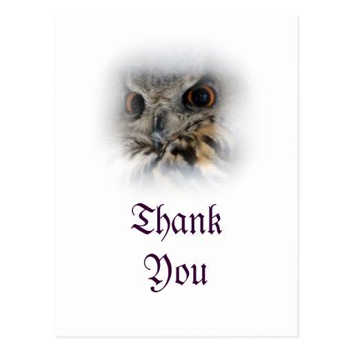 Eurasian Eagle-owl Thank You Postcard