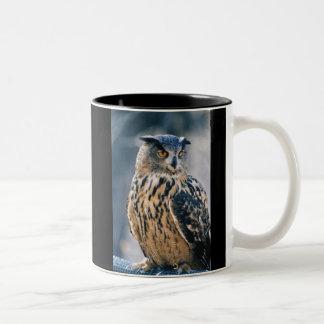Eurasian Eagle Owl Two-Tone Coffee Mug