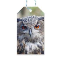 Eurasian Eagle-Owl, Uhu 02.2.o Gift Tags