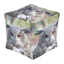 Eurasian Eagle-Owl, Uhu Pouf