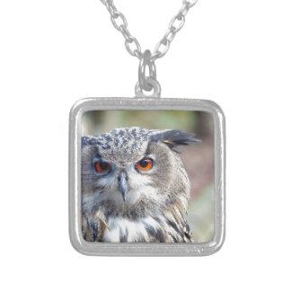Eurasian Eagle-Owl, Uhu Silver Plated Necklace
