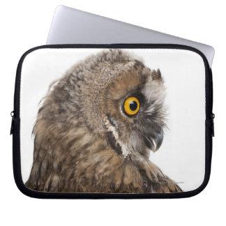 Eurasian Scops-owl - Otus scops (2 months old) Computer Sleeve