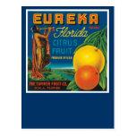 Eureka Brand Florida Citrus Fruit Postcard