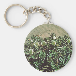 Eureka Evening Primrose Basic Round Button Keychain