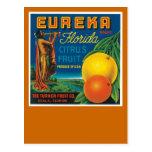 Eureka Florida Citrus Fruit Postcard
