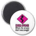 Eureka Springs streets Refrigerator Magnet
