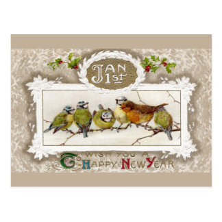Euro Robin and Blue Tits Vintage New Year Postcard