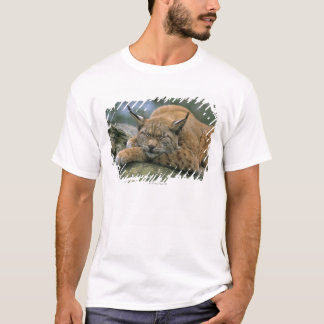 Europ�_ischer Luchs, Eurasischer Luchs (Lynx T-Shirt