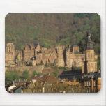 Europa, Alemania, Heidelberg. Castillo Tapetes De Ratones