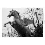 Europa, Austria, Salzburg. Estatua coa alas del ca Tarjeta
