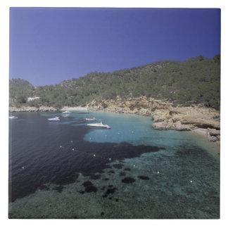Europa, España, Balearics, Ibiza, Cala Salada. Azulejo Cuadrado Grande