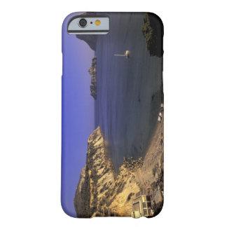 Europa, España, Balearics, Ibiza, d'Hort de Cala Funda De iPhone 6 Barely There