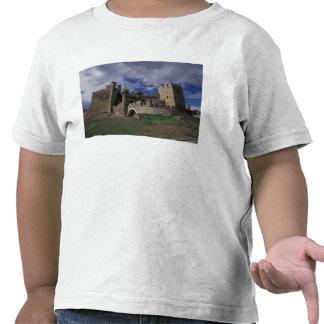 Europa, España, Ponferrada, León. Templer Camisetas