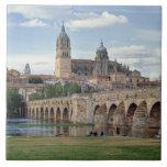 Europa, España, Salamanca. El puente romano encima Azulejo