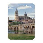 Europa, España, Salamanca. El puente romano encima Imanes