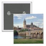 Europa, España, Salamanca. El puente romano encima Pins