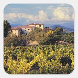 Europa, Francia, Bonnieux. Los viñedos cubren Colcomanias Cuadradass