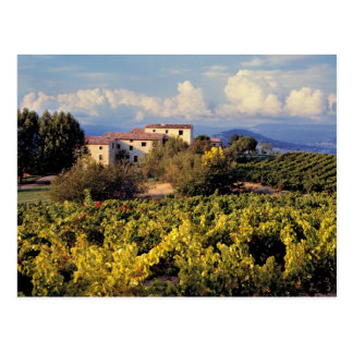 Europa, Francia, Bonnieux. Los viñedos cubren Postal