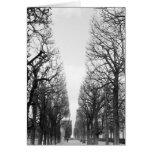 Europa, Francia, París. Árboles del invierno, Marc Tarjeta De Felicitación