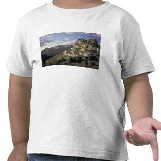 Europa, Francia, Provence, La Roque Alric, Camisetas