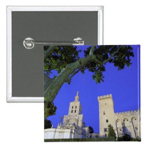 Europa, Francia, Provence, Vaucluse, Aviñón Pin Cuadrada 5 Cm