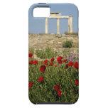 Europa, Grecia, Cícladas, Delos. Ruinas de la colu iPhone 5 Case-Mate Fundas
