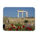 Europa, Grecia, Cícladas, Delos. Ruinas de la colu Imanes Flexibles