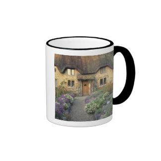 Europa, Inglaterra, Chippenham. Luz de la madrugad Taza De Café